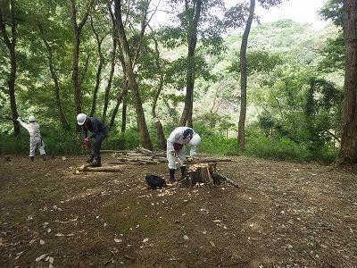樹林地管理モデル事業